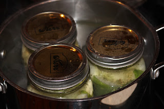 IMG 6209 - Homemade Dill Pickles