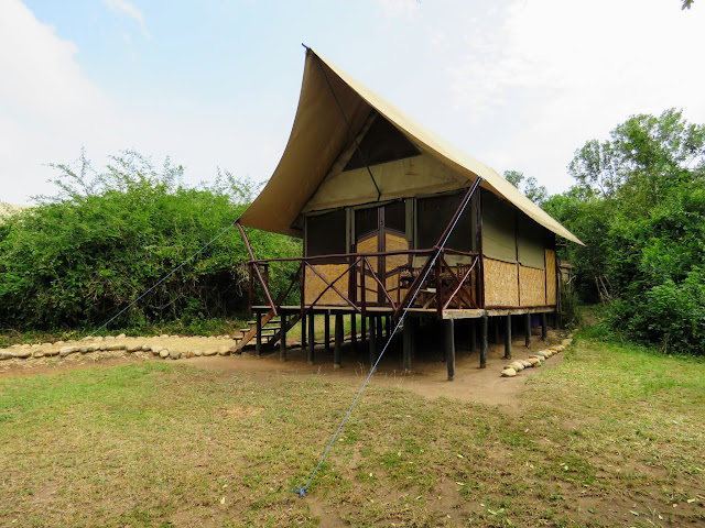 Tent at Bush Lodge in Uganda