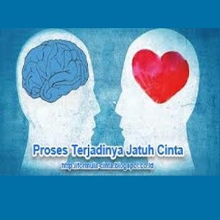 Proses Terjadinya Jatuh Cinta Pada Seseorang