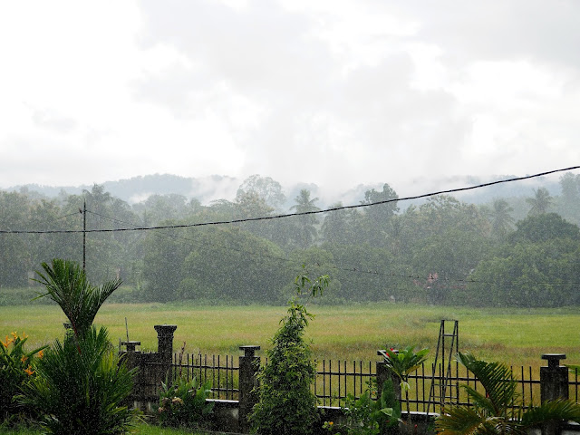 Wetter Langkawi