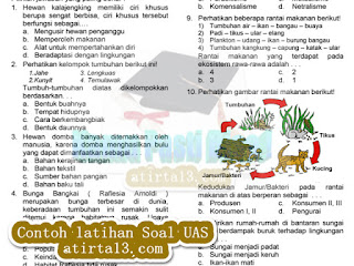 Download Soal Latihan UAS SD Terbaru