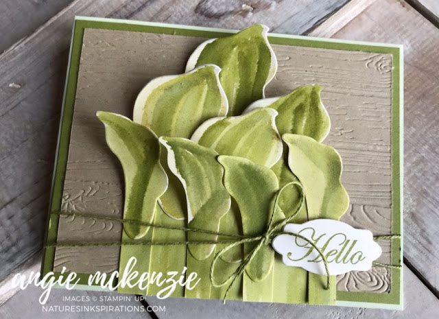 Lasting Lily Hostas | Nature's INKspirations by Angie McKenzie