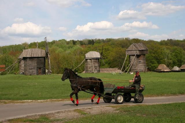 лошадь и телега
