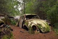 бельгия кладбище авто