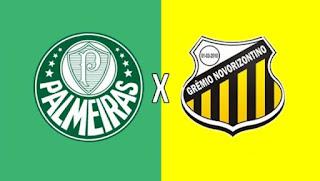 Palmeiras x Novorizontino Hoje Ao Vivo às 21 horas no Premiere - 26/03/2019