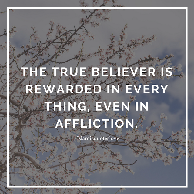 The True believer is rewarded in every thing,  even in affliction.  - Abu Bakr