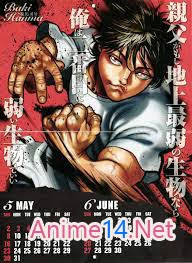 Grappler Baki -  2009 Poster