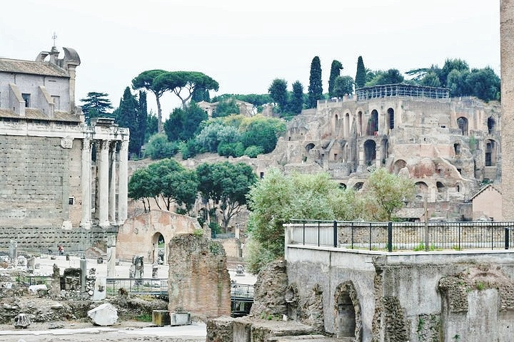 The roman forum full of history and culture