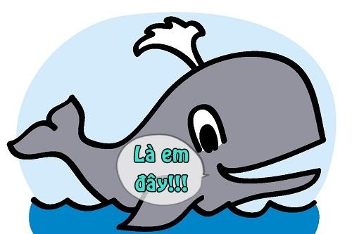 Cá voi