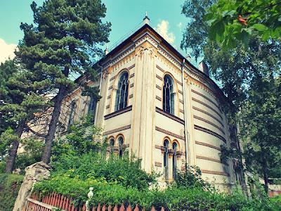 sinagoga vatra dornei