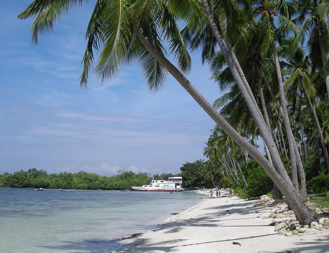 Xvlor Panglao Island is white coast and rich spot of biodiversity in Bohol Sea