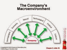 Mcdonald s microenvironmental factors