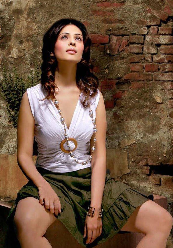 Bollywood Hot Actress Hot Scene: Anjana Sukhani Hot Photos