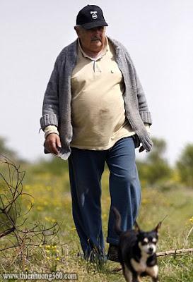 Tổng Thống Jose Mujica và chú chó Manuela mà ông rất yêu quý