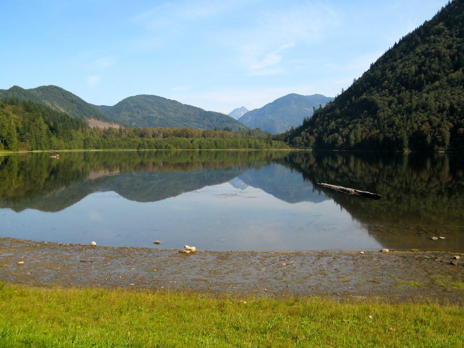 sasquatch provincial park campground