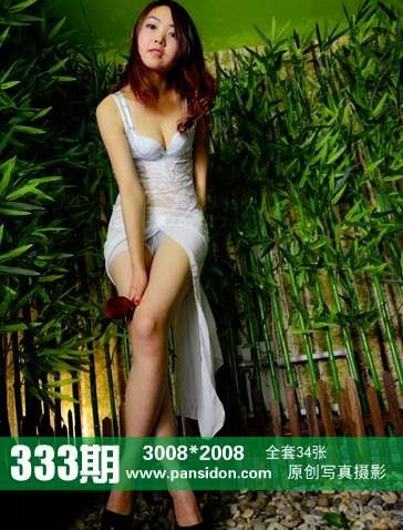 PANS_NO.333 PANS 2014-11-14 NO.333 12020