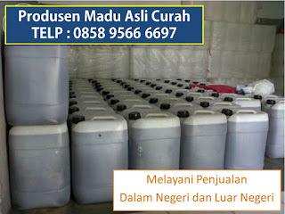 TELP : +62 858 9566 6697, Jual Madu Murni Curah, Jual Madu Curah Asli