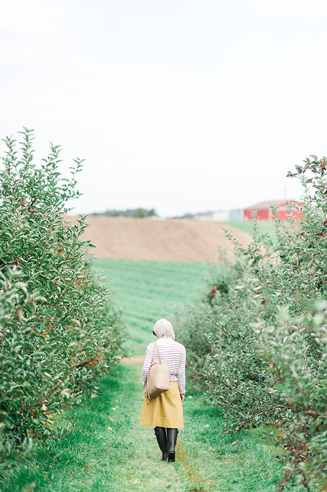 Apple Orchard - Fall Things to Do - Baugher's Apple Orchard - Baltimore in the Fall - Mustard Midi Skirt - Hunter Boots - Puffer Vest - Fall Outfit