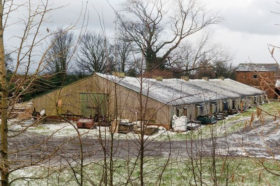 Forcing sheds in The Rhubarb Triangle. West Yorkshire Photo Martin Parr