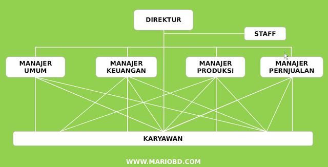 struktur organisasi fungsional dan staf