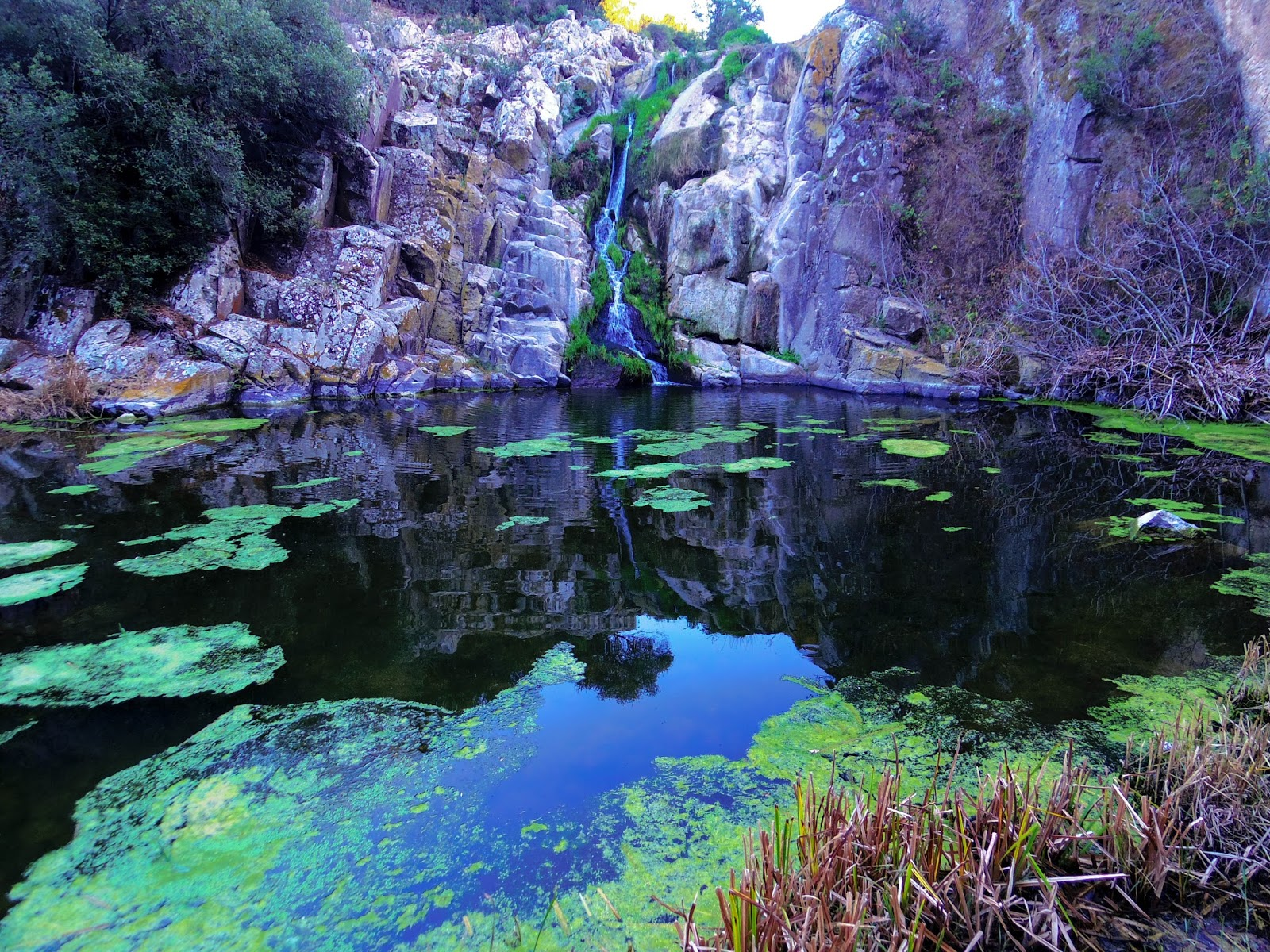 Martis cascata di triulintas e foresta pietrificata il for Case moderne nei boschi