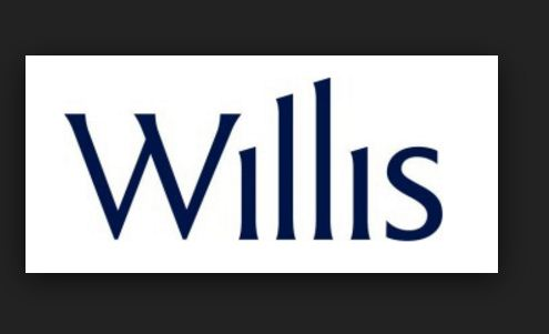 Willis Walkin For Freshers 0 To 2 Years For 2015 2016