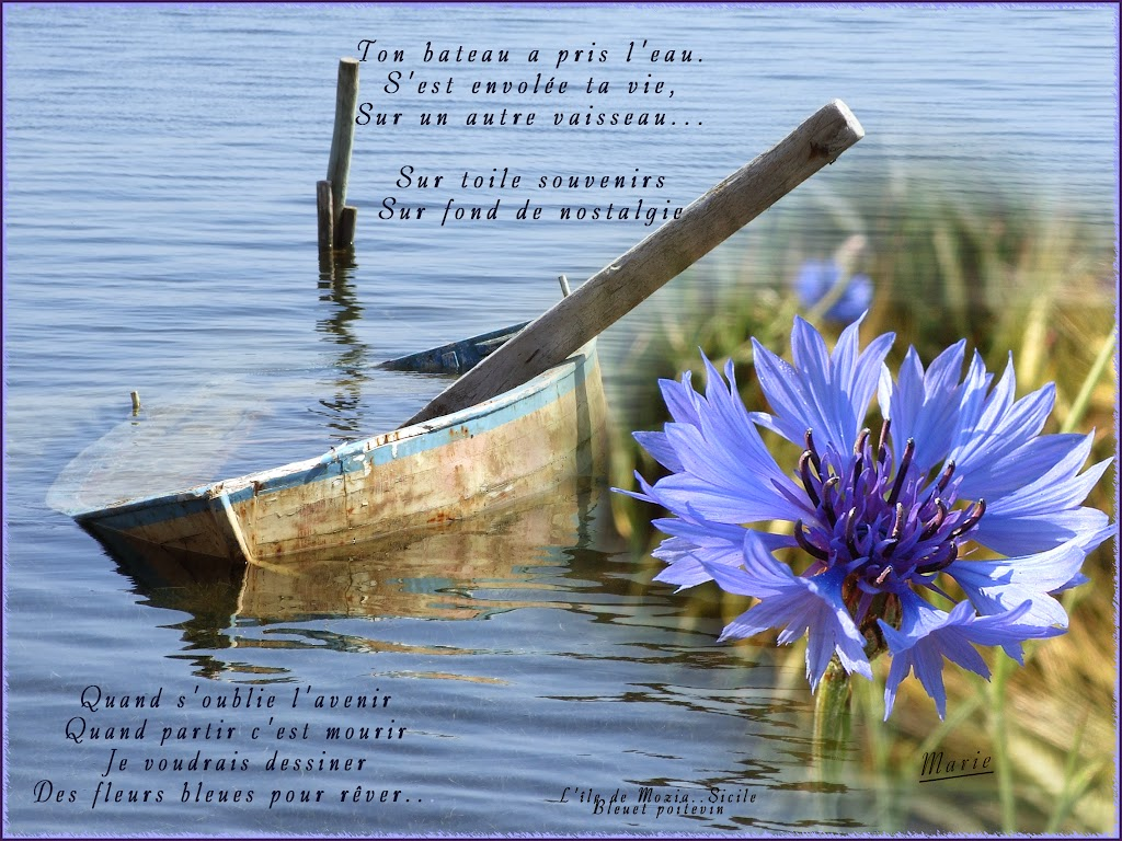 Au Pays Des Images Et Des Mots Vendredi 15 Octobre 2010