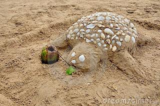 Tortuga hecha en arena por niños