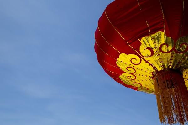 Esta semana inició un nuevo año en China y esta vez le pertenece al cerdo
