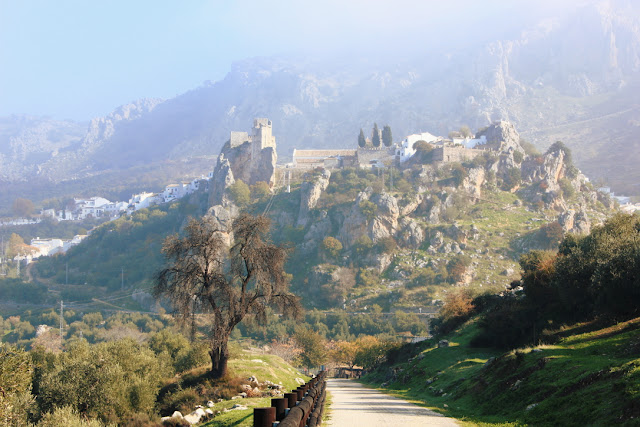 zamek i wioska na skale widziane ze ścieżki rowerowej
