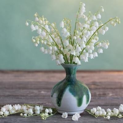 Ornamental Flowers Lily of the Valley
