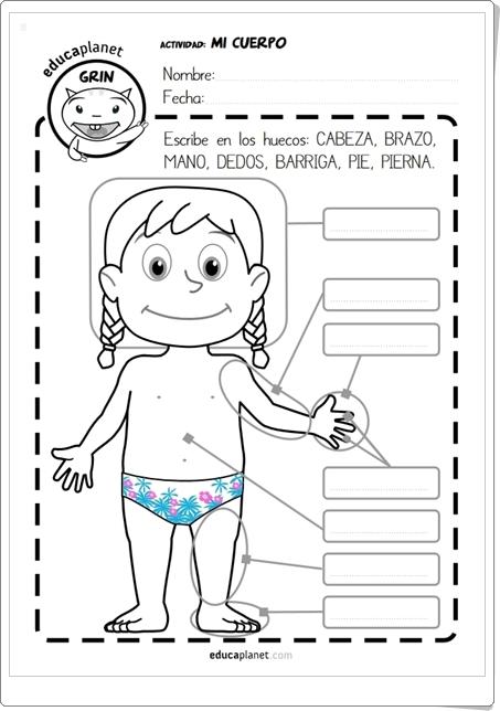 """Mi cuerpo"" (Fichas en español e inglés de Educaplanet)"