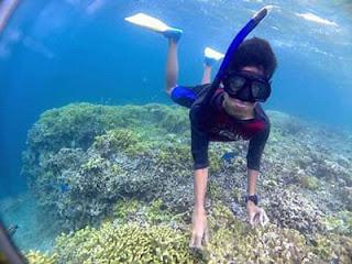 Bermain terumbu karang di Wisata Pulau Menjangan Bali Barat