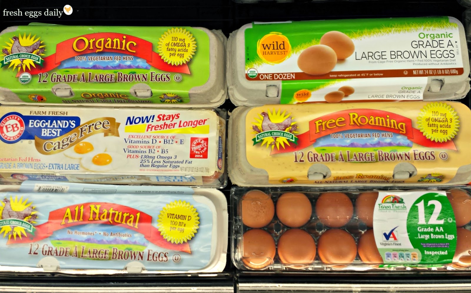 What Does Free Range Really Mean Decoding Egg Carton