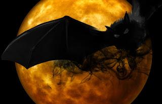 Morcegos curiosidades sobre o seu misterioso mundo.