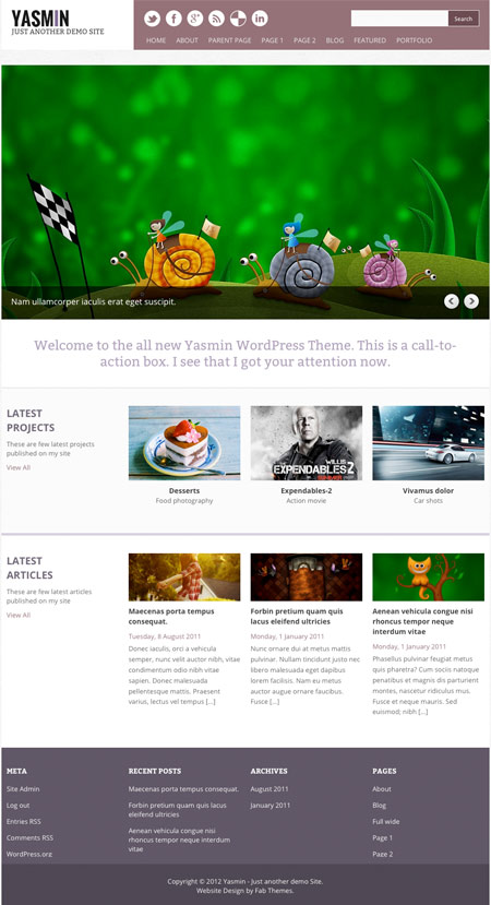 professional free theme for wordpress 30 Ücretli Ücretsiz WordPress Teması
