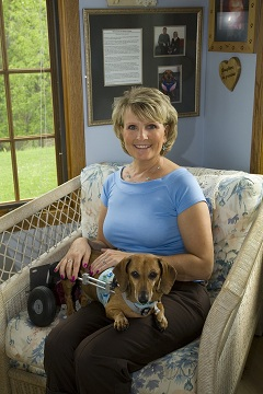 Pet Blogs United: The Blessings of a Dachshund on Wheels