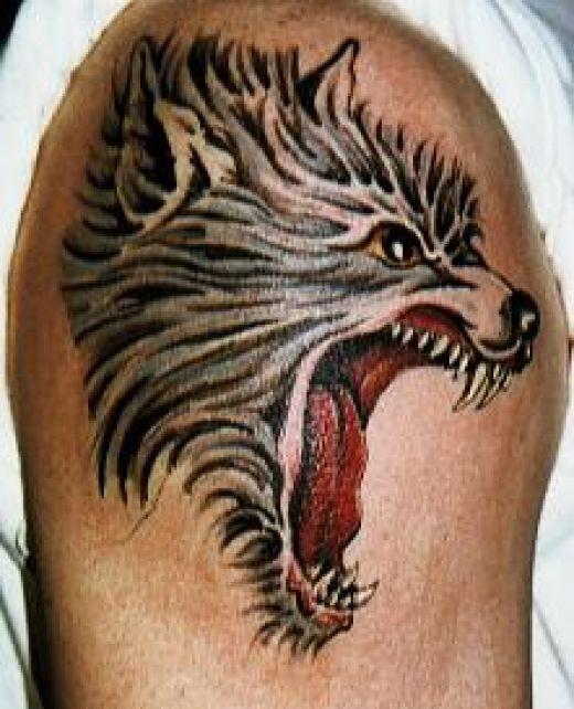wolf tattoo 4