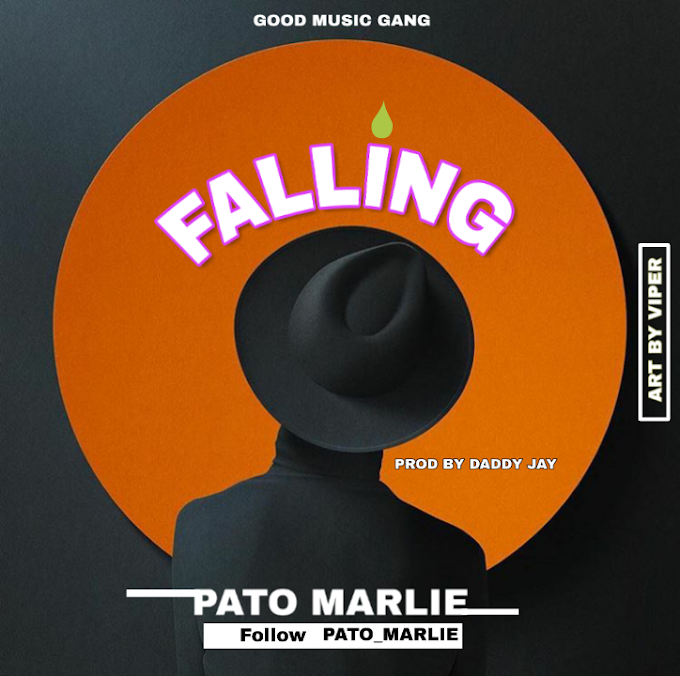 DOWNLOAD MUSIC: FALLING BY PATO MARLIE
