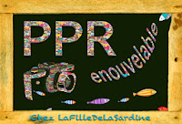 PPR - Recapitulatif hebdomadaire