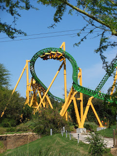 Cheetah Hunt Review, Tampa's Busch Gardens