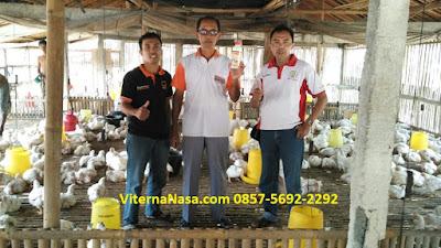 Produk NASA Untuk Ayam Boiler