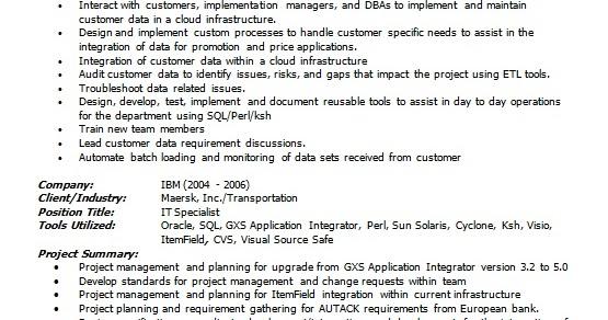 it specialist resume model in word format free download