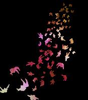 folhas voando