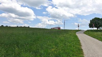 Bahnübergang mit Zug auf einer Weide