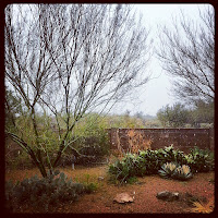 The Start of the Great Tucson Blizzard of 2013