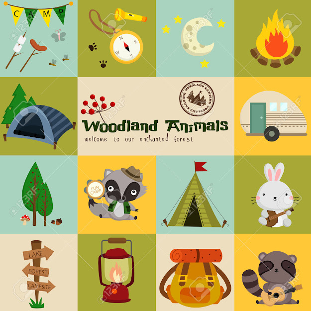Square Woodland Animal Camping Vector Set Stock Vector
