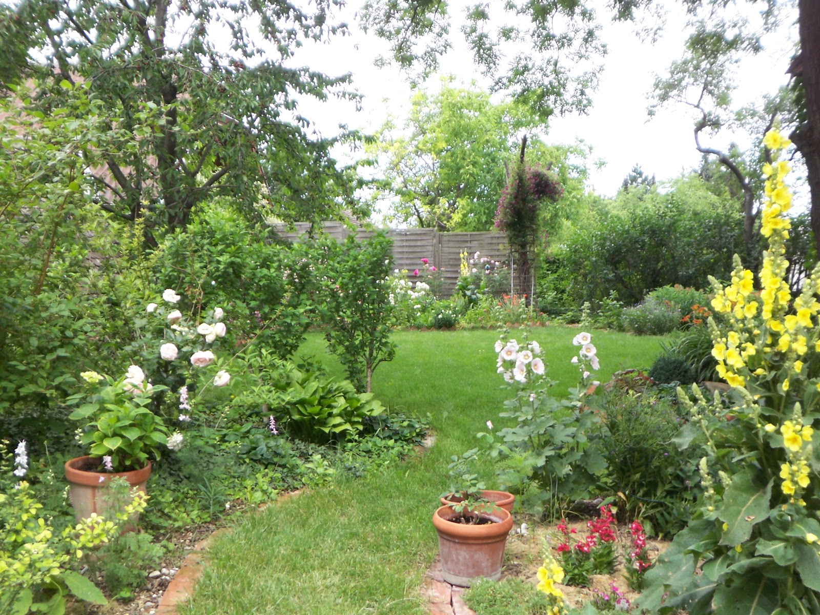 rose und lavendel garten urlaub sommer. Black Bedroom Furniture Sets. Home Design Ideas