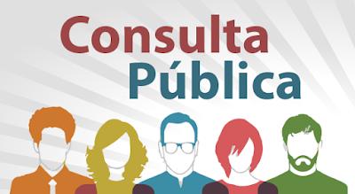 Consulta Pública - Política Nacional de Segurança Pública (PNaSP)