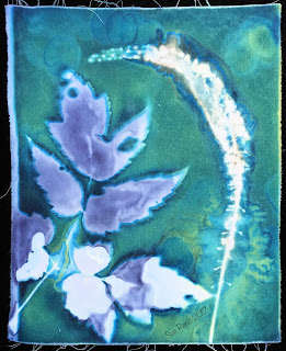 Wet Cyanotype_Sue Reno_Image 82